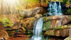 www.lacosmeticanatural.com cosmetica natural malaga jabones naturales, cosmetica ecologica malaga, jabon aceite de oliva virgen extra
